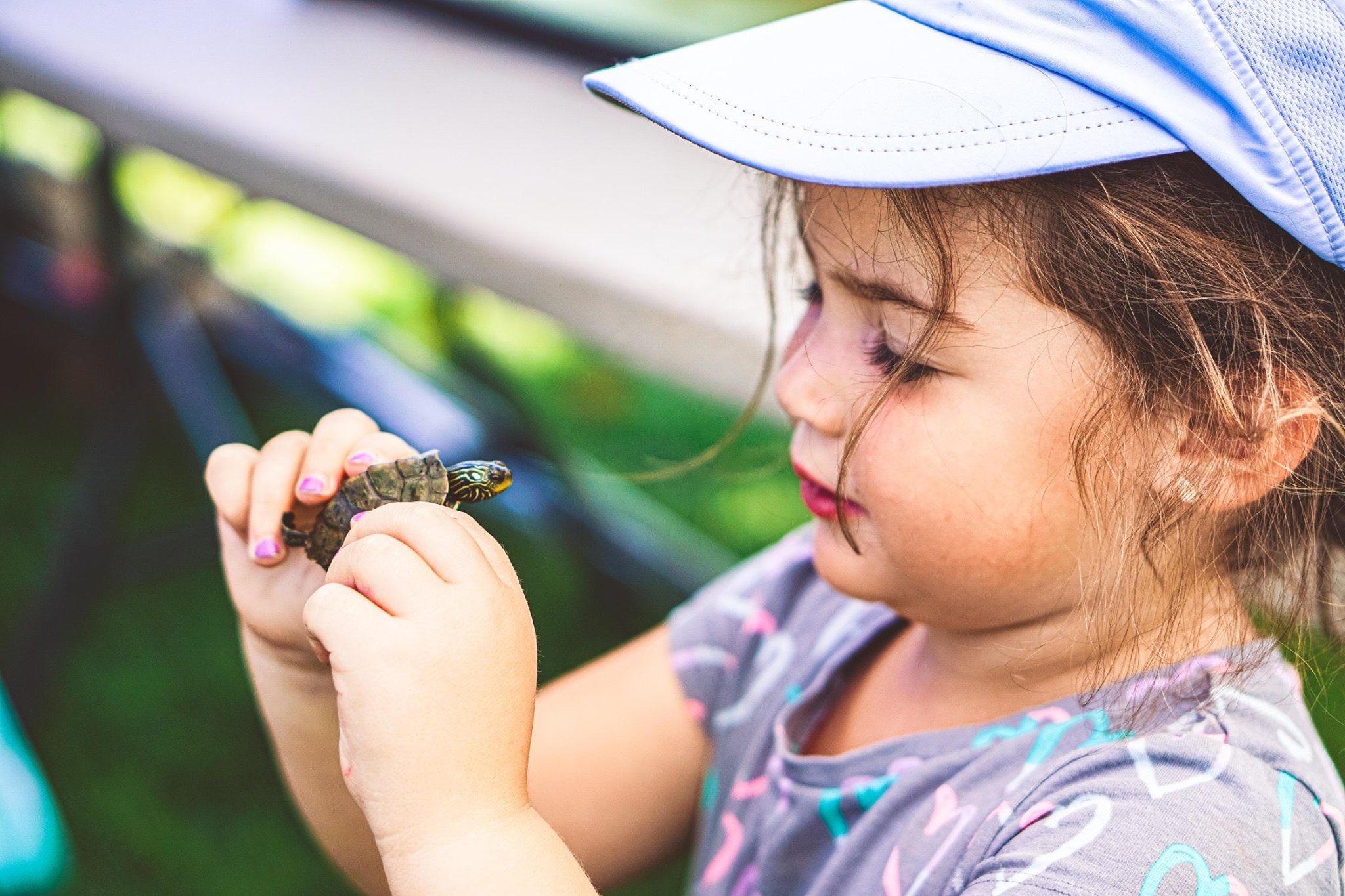 Young girl with baby turtle